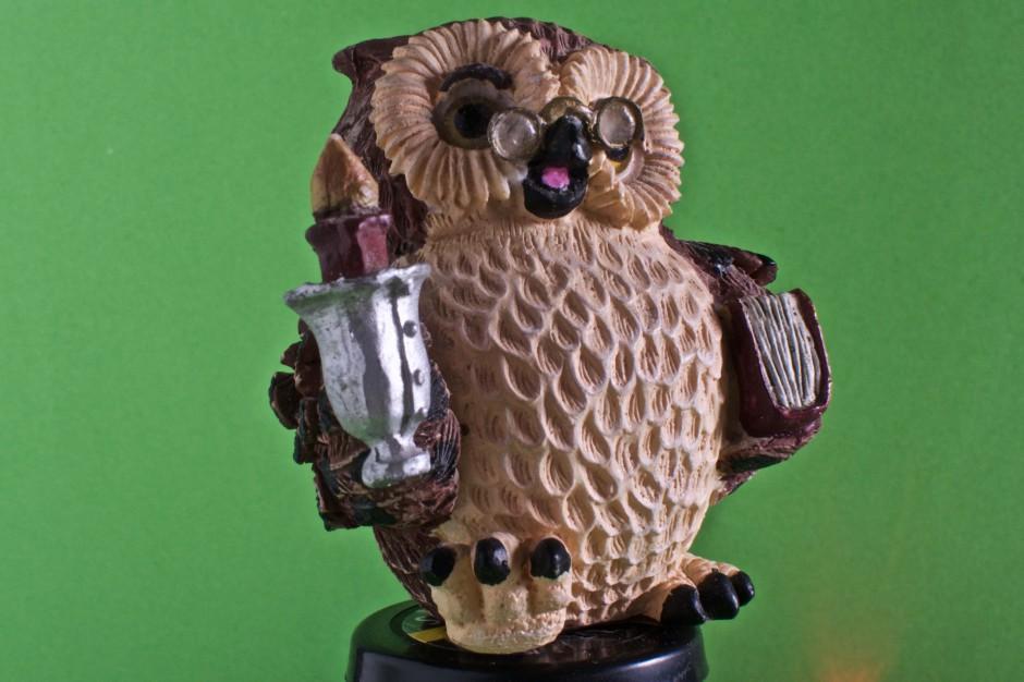Owl Scanned